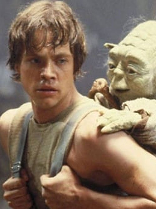 Luke Skywalker Dagobah Training